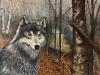 ie-loup