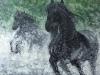 chevaux-en-cavale